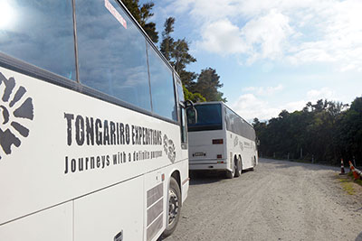 Tongariro Crossing Transport Timetable